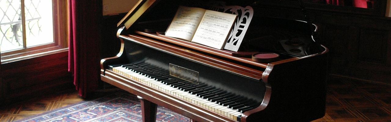 Leon Rombouts, pianostemmer, pianotechnicus